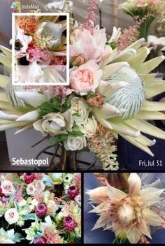 Loved the color palette of this white. Cream, blush & plum wine wedding at Calistoga Ranch. With @suzyberberian @fleursdefrance  Fleurs de France - Sonoma, Napa Valley, Calistoga, Healdsburg, St Helena, Wine Country, Wedding Florist, Wedding Flowers & Event Designer
