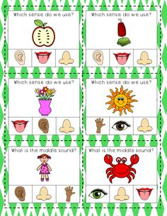 This is part of a 57 page 5 Senses unit. It includes individual senses worksheets, a flip-it book, emergent readers, songs and games. Five Senses Preschool, Emotions Preschool, Body Parts Preschool, Senses Activities, Free Preschool, Preschool Worksheets, Kindergarten Goals, Kindergarten Science, Preschool Activity Books