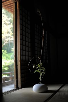 Arrangements Ikebana, Ikebana Flower Arrangement, Floral Arrangements, Japanese Flowers, Japanese Art, House Of The Rising Sun, Japanese Interior, Arte Floral, Tea Ceremony