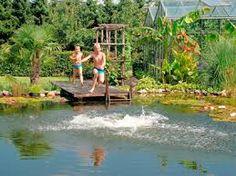 natuurlijke zwemvijver Garden Bridge, Pond, Outdoor Structures, Water Pond, Garden Ponds