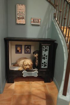 Why is using a dog house a good idea? Most people tend to have the misconception that dog houses are meant for only those dog owners who intend to keep their dogs outside. Dog Bedroom, Diy Dog Bed, Dog Furniture, Dog Rooms, Ideias Diy, Puppy Care, Dog Crate, Pet Beds, Dog Houses