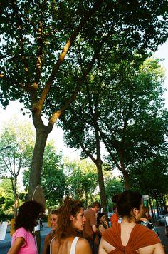 Cittadini di Verona impegnati a difendere i platani secolari di via Galliano Verona, Dolores Park, Couple Photos, Couples, Travel, Couple Shots, Viajes, Couple Photography, Couple