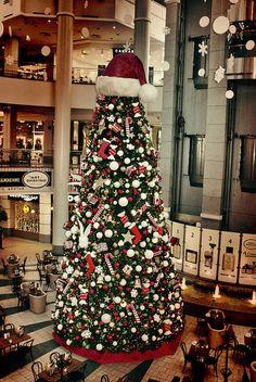 Santa's hat on a Christmas tree!