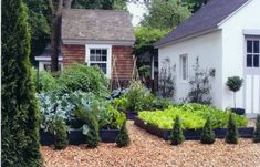 Potager French Garden Style: Combining Edible & Flowering Plants