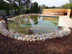 Fertig! Natural Swimming Pools, Swimming Ponds, Swiming Pool, Dream Pools, Plunge Pool, Garden Bridge, Beautiful Gardens, Garden Landscaping, Farmer