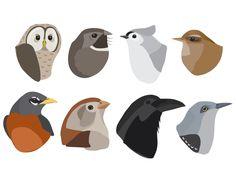 Birds for our app Wildfulness www.getwildfulness.com