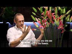 Lily workshop Menno Kroon, 1 of 2 - YouTube