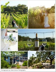 wine wedding country