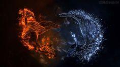 Papel de Parede - Batalha Entre os Pássaros de Água e Fogo