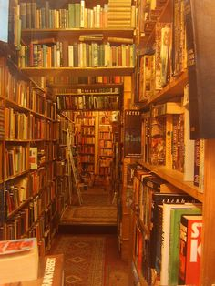 this IS The Hidden Nook (Armchair Bookstore, Edinburgh, Scotland) Dream Library, Library Books, Library Ladder, Beautiful Library, I Love Books, Books To Read, Edinburgh Scotland, Old Books, Book Nooks