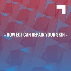 How EGF Can Repair Your Skin https://beskindriven.com/blogs/news/how-egf-can-repair-your-skin?utm_campaign=crowdfire&utm_content=crowdfire&utm_medium=social&utm_source=pinterest