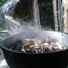 > #Jaraguenses jerbiendo cangrejos y camarones