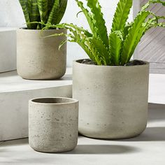 On sale. Shop Seminyak Taupe Planter Raw material of the city cements foundation for lush growth. Planter brings industrial vibes to the balcony/patio/porch. Works indoors too, thrives in multiples. Galvanized Planters, Resin Planters, Glass Planter, Basket Planters, White Planters, Modern Planters, Large Planters, Outdoor Planters, Cement Pots