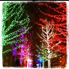 Fort worth, TX Christmas lights. #obsessed