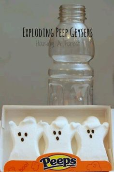 Exploding Peep Geysers - what a fun science experiment for kids during october for halloween! Halloween Science, Theme Halloween, Halloween Activities, Science Activities, Activities For Kids, Science Ideas, Halloween Candy, Halloween Crafts, Halloween Camping