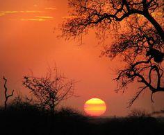 Satara, Africa