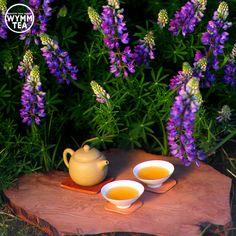 Earth laughs in flowers  #tea #puerh #puer #earth #healthy #flower #purple #teaaddict #tealover #sunshine #teaware #chinese #explore #lovelife #lifestyle #wymmtea #茶 #普洱 #中国茶 #picoftheday
