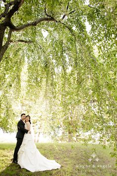 See more wedding photos @ http://www.wayneandangela.com
