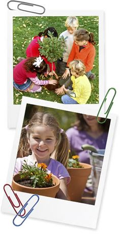 a website specially designed to be an interactive classroom, allotment plot, and hobby garden