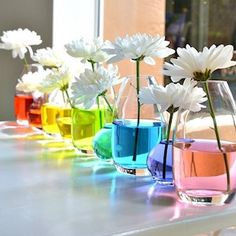 DIY Spring Centerpieces That Are Perfect for Easter How cool is this rainbow water centerpiece?How cool is this rainbow water centerpiece? Water Centerpieces, Rainbow Centerpiece, Centerpiece Ideas, Rainbow Decorations, Colorful Centerpieces, Rainbow Wedding Centerpieces, Birthday Centerpieces, Simple Table Decorations, Inexpensive Centerpieces
