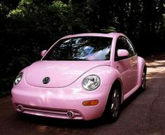 Pink beetle by Coeny