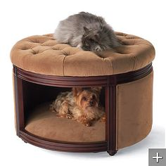 for my dog bed fetish... great space saving, dual purpose idea!
