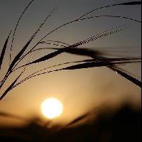 ﺭﻏﺒﺎﺕ ﺍﻟﻤﺴﺎﺀ ﻛثيرﺓ ﻭﻻ ﺍﺭﻳﺪ ﻣﻨﻬﺎ ﺳﻮﻯ ﺍﻟﺴﻌﺎﺩﺓ ﻟﻲ ﻭﻟﻜﻢ مساء السعاده تمنيتك Celestial Sunset Outdoor