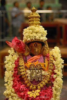 https://flic.kr/p/og9MUR | Sukravara Amman  , Kapaleeswarar Temple .