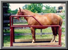 Stocks, Horse Stocks in Willard, MO