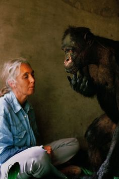 Jane Goodall and Gregoire by Nick Nichols #Jane_Goodall