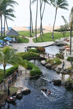 Want to rub shoulders with celebrities and dolphins during your honeymoon? We suggest a stay at the dreamy Kahala Hotel & Resort in Oahu.
