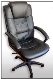 20131106 cadeira presidente 5 Cadeira Presidente