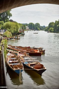 Idyllic Riichmond upon Thames, On a barmy summers afternoon. walk Hill Summer days out Life London upon Thames london Richmond Bridge, Richmond London, Richmond Upon Thames, London Bridge, Richmond Hill, Magna Carta, River Thames, When I Grow Up, London Calling