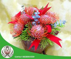 Pin cushions have a way of making themselves look very festive! Visit the Garden Route Mall and purchase a variety of pin cushions and fynbos. Bofberg Flowers can also make custom bouquets for you.