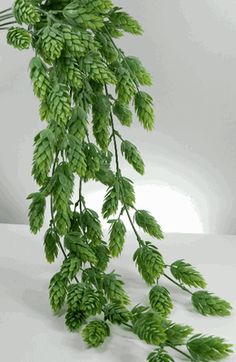 30 inch long spray of artificial hops.  $5.00 (out of stock right now)