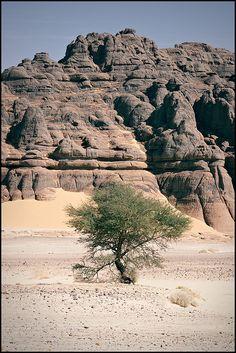 Hoggar Mountain region, Algeria.  Photo: cratzy, via Flickr