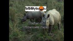 Trailer of Wilderness Nepal