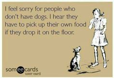 This always becomes an awkward moment when I'm at a pet free home and I'm waiting for their non-existent dog to show up and eat what I've just dropped on their floor. Oops!