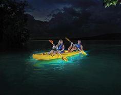 Puerto Rico Kayaking: Laguna Grande Bio Bay