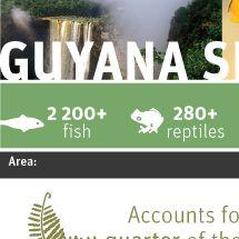 Guyana shield Infographic