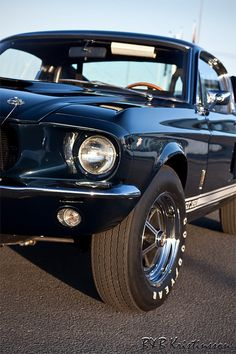 Shelby GT-350 ´67. I think I just came !!!!!!!!!!