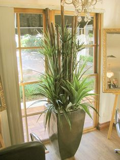 artificial plants new products