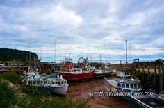 Fishing Boats Sitting on the Ocean Floor at Low Tide in the Village of Alma near Moncton, New Brunswick, Canada New Brunswick, Atlantic Canada, Newfoundland And Labrador, Adventure Activities, Prince Edward Island, Bird Species, Nova Scotia, Marine Life