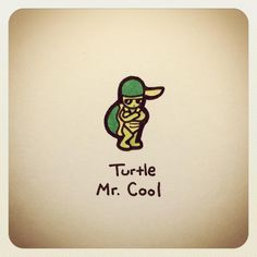 Turtle Mr. Cool
