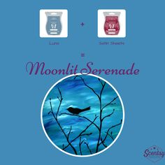 Scentsy Recipe - Moonlit Serenade Summer 2015 http://lanagoldie.Scentsy.ca heartland_qh@hotmail.com or find me on Instagram or Facebook & send me a msg.