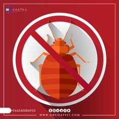 #Bed #bugs and how to eliminate them - Detailed report on Bed #Bug and the most effective ways to control them  👉More here: https://orkidapest.com/…/bl…/حشرة-الفراش-وكيفية-القضاء-عليها