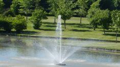 Heritage Park, West Pond, Upper Canada Drive, June 08, 2016, 17:30 p.m.