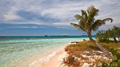 Pigeon Casys - Roatán Roatan, Pigeon, Beaches, World, Water, Outdoor, Caribbean, The World, Gripe Water
