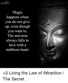 Image result for universe falls in love with a stubborn heart