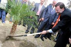 el ventano: ¿Dónde están los 500 millones de árboles de Rajoy?